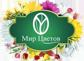 Прайс-лист по продаже цветов, как посадить розу из букета в домашних условиях видео